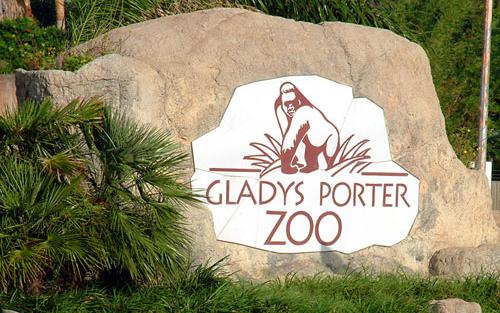 Gladys-Zoo